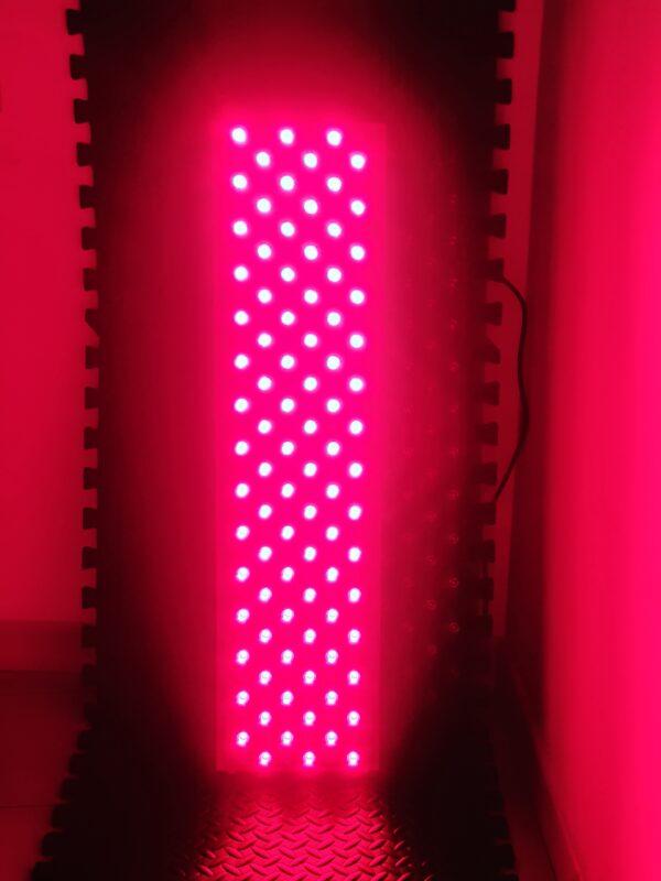 PantheosPro 900 Per Terapia della luce Rossa Con Timer Accesa RED