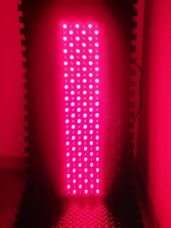 PantheosPro 900 Per Terapia della luce Rossa Con Timer Accesa RED+NIR